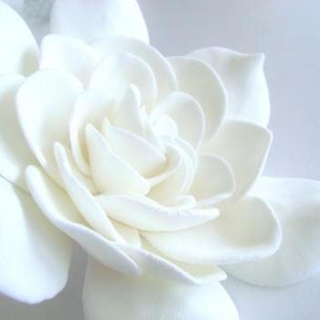 Wedding Hair Fscinator. Gardenia Hair Clips. Bridal Hair Accessories